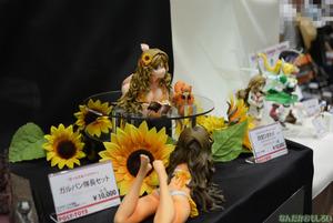 ワンダーフェスティバル2013夏 レポ・画像まとめ_0904