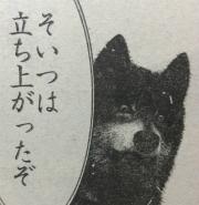 『喧嘩稼業』第48話感想2