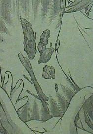 食戟のソーマ 第52話感想 薬膳料理のエキスパート