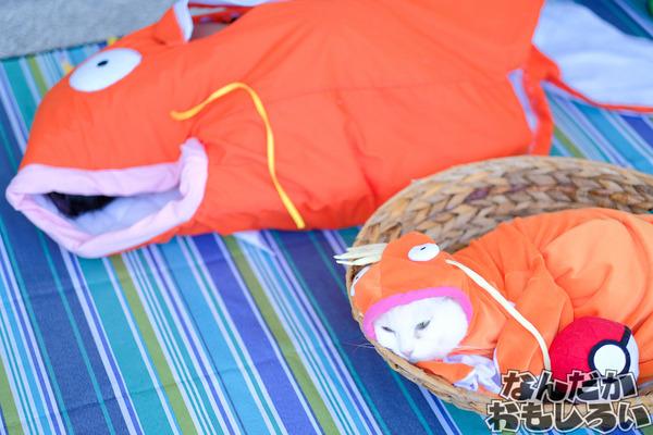 『Petit Fancy25(台湾PF)』1日目のコスプレレポート!4581