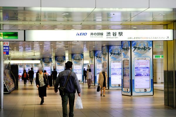 アズールレーン新宿・渋谷の大規模広告-92