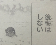 『ニセコイ』第226話感想(ネタバレあり)3