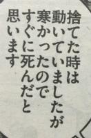 『喧嘩稼業』第64話感想(ネタバレあり)1