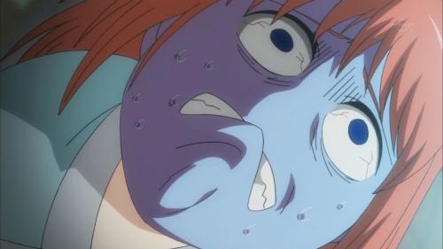 アニメ『銀魂』第296話感想(ネタバレあり)2