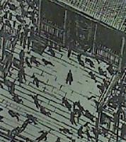 『彼岸島 最後の47日間』最終回画像・感想5