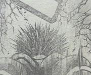 『刃牙道(バキどう)』第79話感想ッッ1(ネタバレあり)