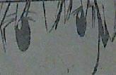 『暗殺教室』第99話画像・感想4