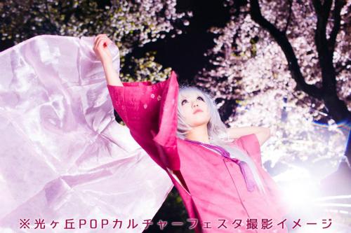 夜桜をバックに撮影も可!都内桜の名所、光ヶ丘公園コスプレイベント開催決定!