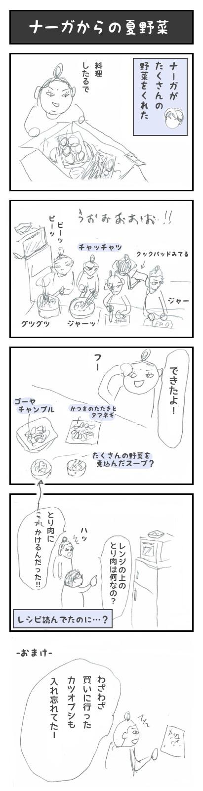【11】ナーガからの夏野菜