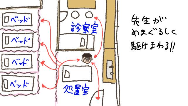 IMG_0493