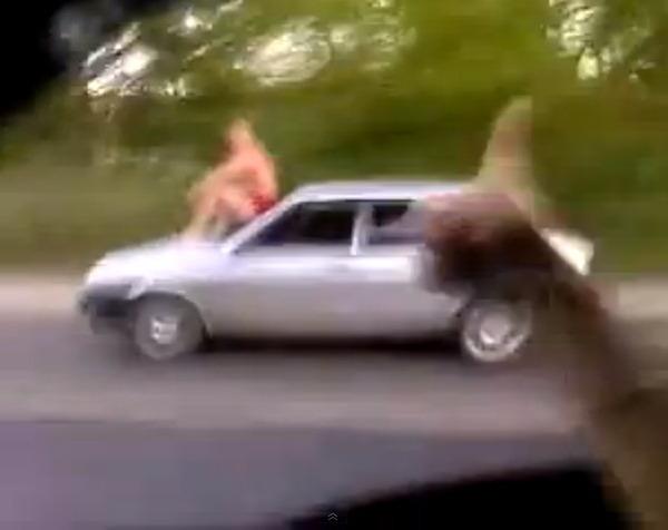 ロシアのドライバー_3