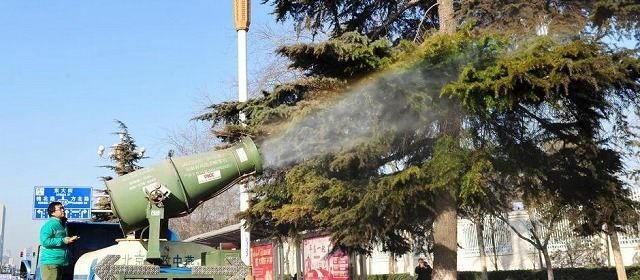 街路樹の洗浄_1