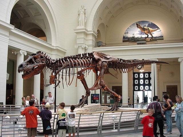 フィールド自然史博物館のスー
