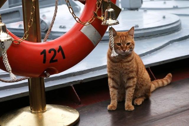 スラヴァ級ミサイル巡洋艦_3
