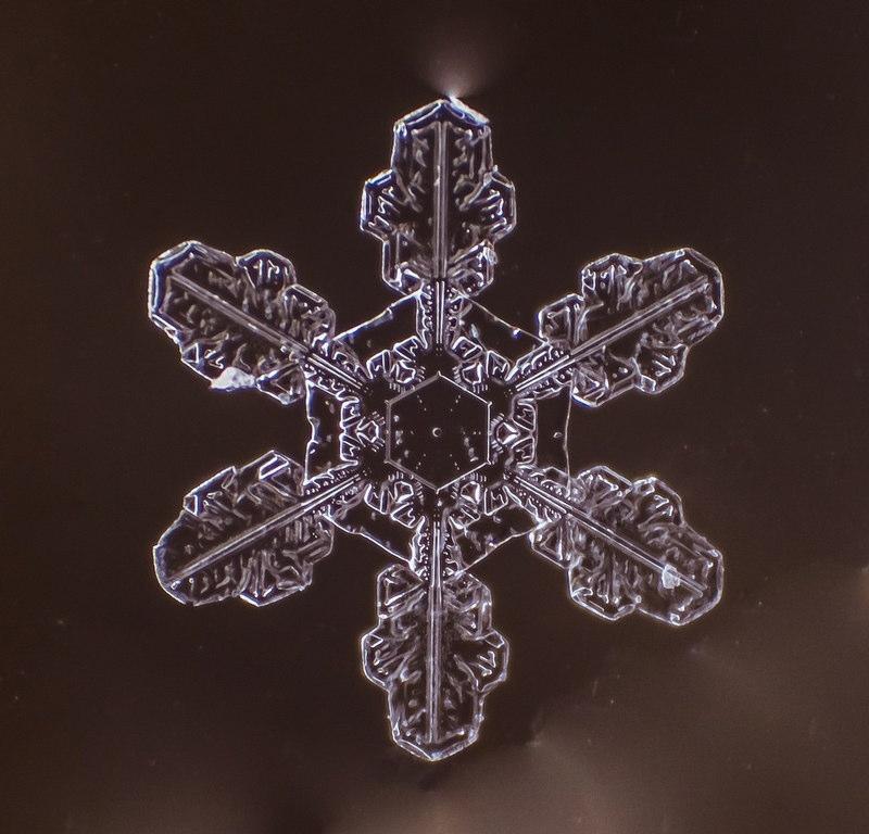 自然の芸術、雪の結晶