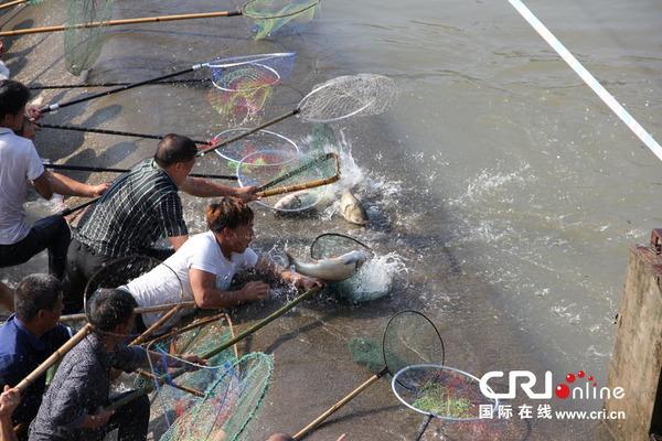 魚を盗む中国人_1