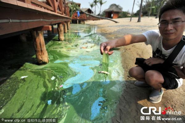 東湖の水質汚染_2