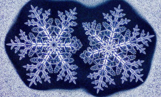 模様が同じ雪の結晶_2