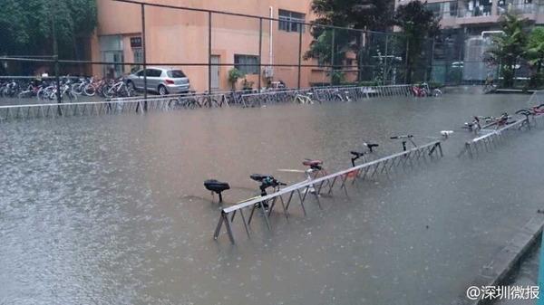 深セン市豪雨_6
