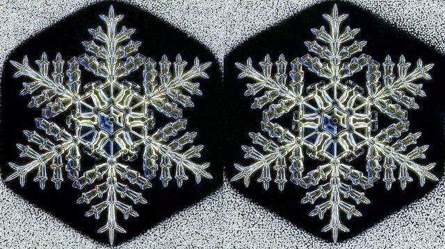 模様が同じ雪の結晶_3