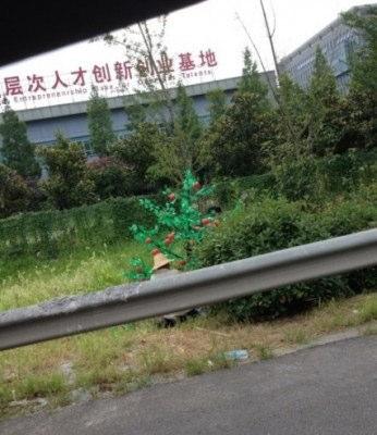 中国で見るプラスチック製の木