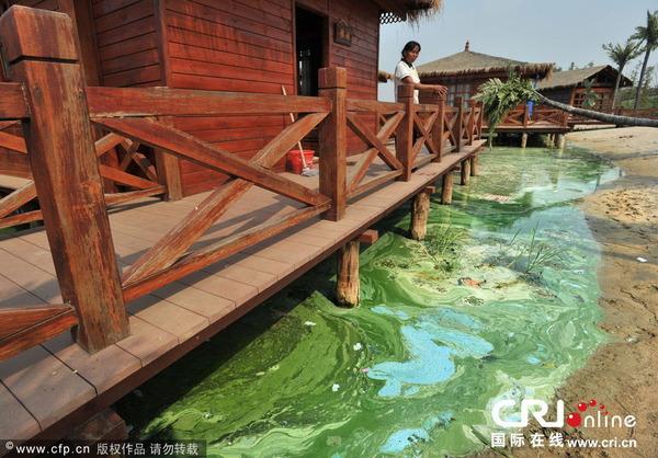 東湖の水質汚染_1