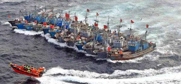 中国密漁船団