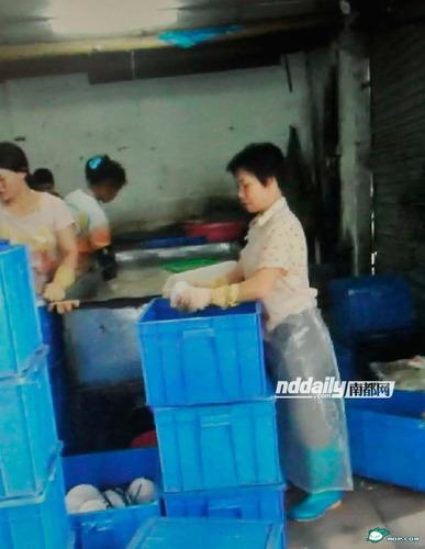 食器洗浄工場_7