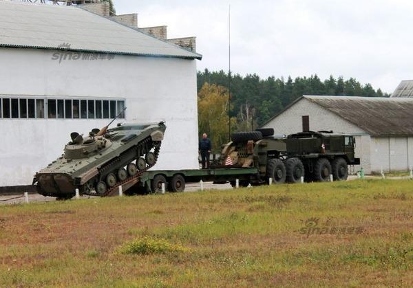 BMP_9