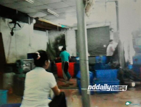 食器洗浄工場_4
