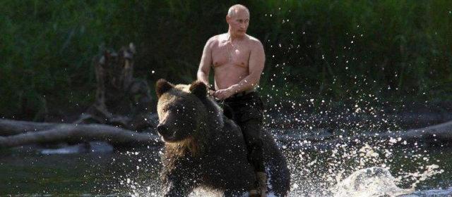 プーチン大統領 熊