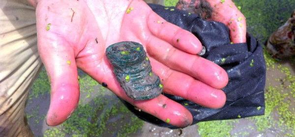 池から古銭_4