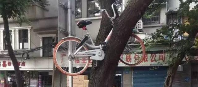 シェアサイクル