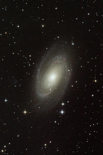 M81-2