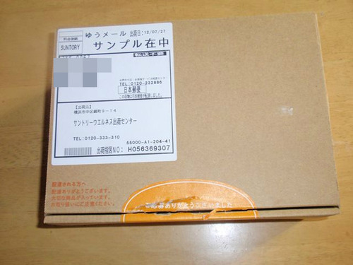 P8050411_R.JPG