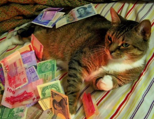 a_few_very_wealthy_cats_640_25