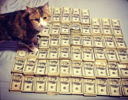 a_few_very_wealthy_cats_640_15