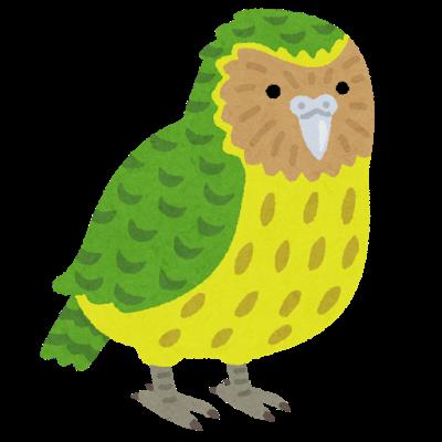 bird_kakapo