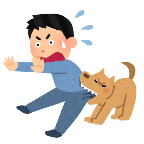 pet_kamu_dog