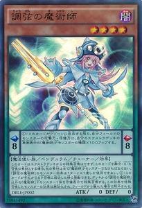 DBLE-JP002