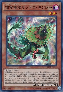 SPFE-JP005