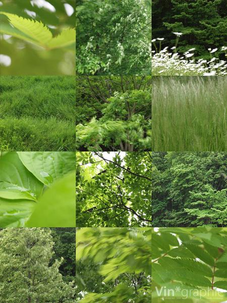 green_09
