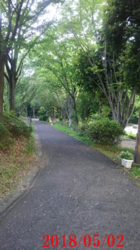 ⑧聖ヶ丘遊歩道