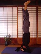 zentra kundalini yoga第2期 マニプラ&アナハタ アサナ manipuraanahata
