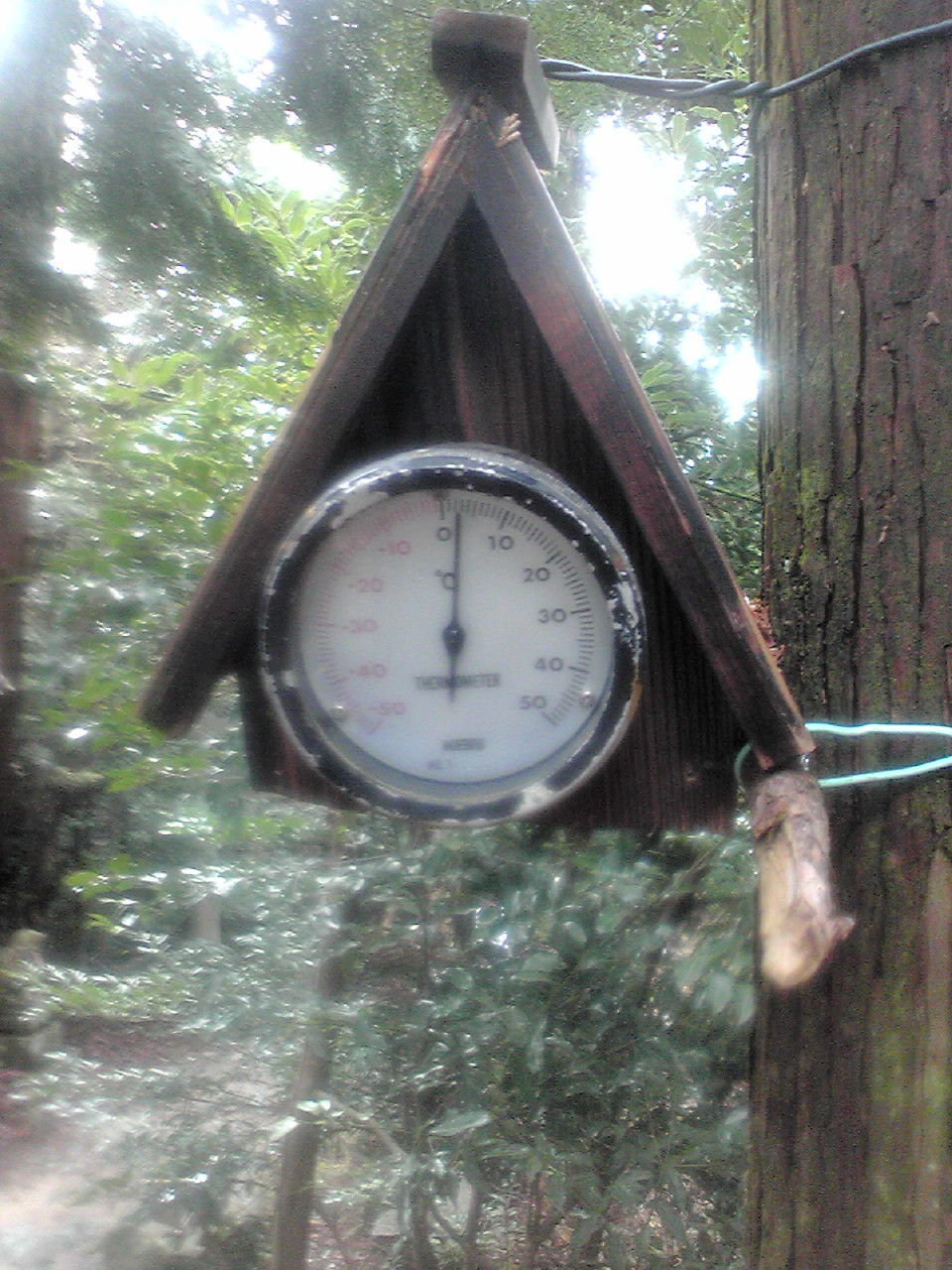 大麻山温度計
