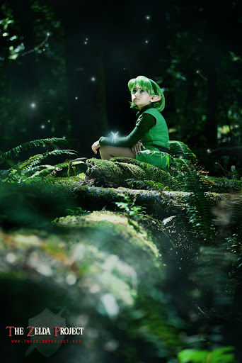 The_Zelda_Project__Waiting_by_Adella