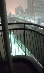 2012-01-23 ユキ