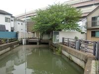 綾瀬川と合流