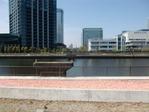 豊洲運河鉄橋跡