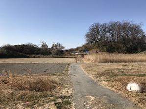 10倉賀野浅間山北東より全景